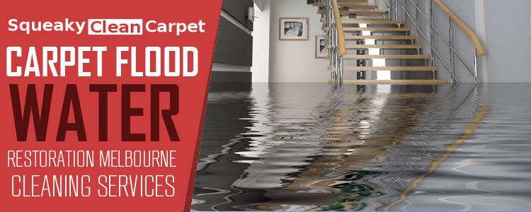 carpet-flood-water-damage-restoration-melbourne-750-B