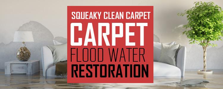 Carpet Flood Restoration