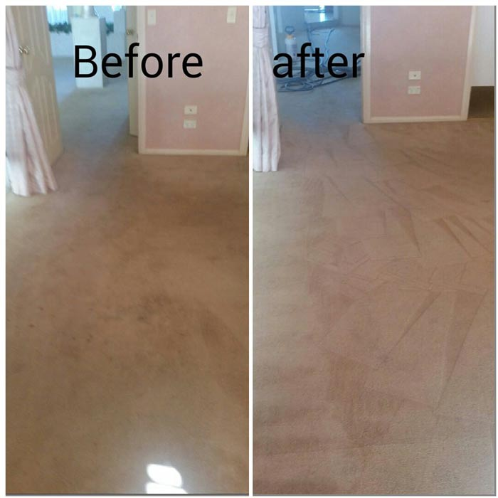 Carpet Cleaning Sydney